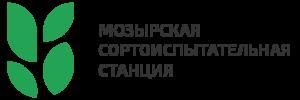 мозырь-01